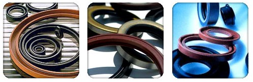National 39711 Oil Seal